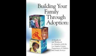 dcfs_adoption_book